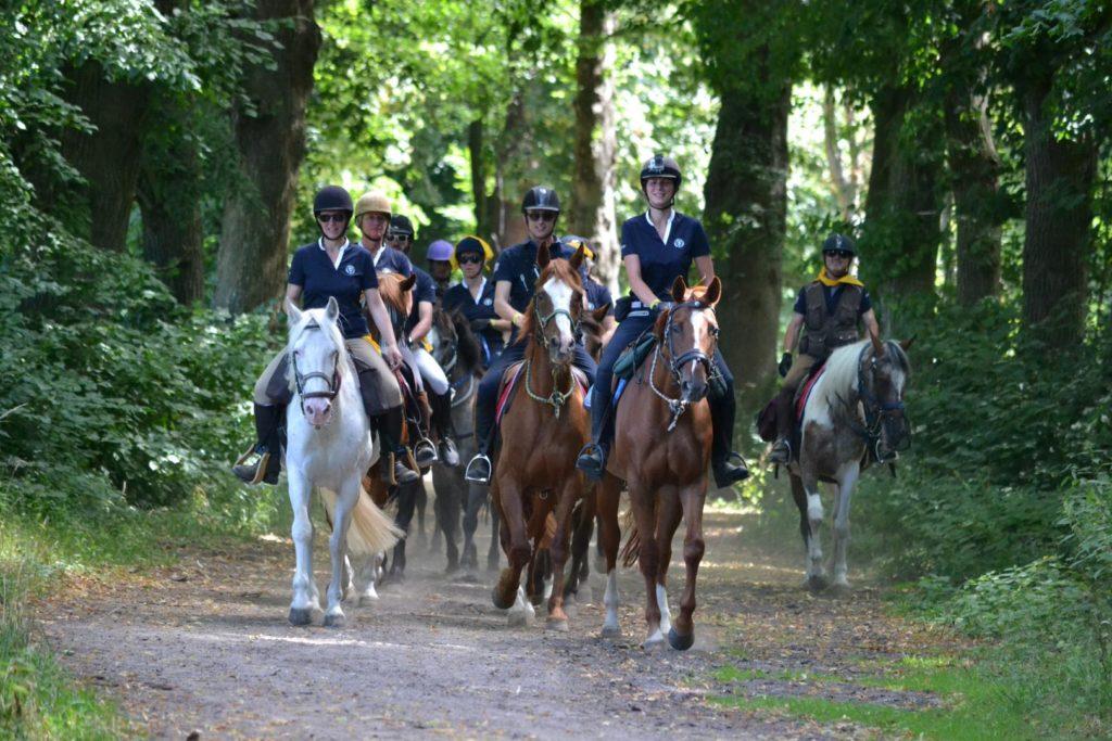 randonnée cheval foret chantilly