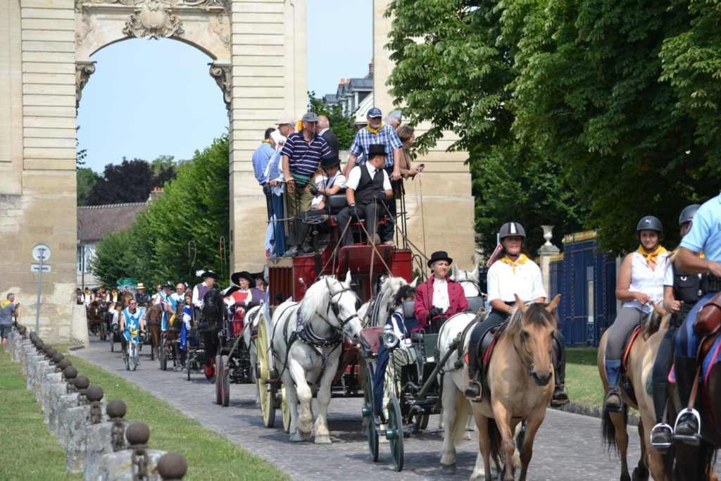 attelage chevaux chantilly
