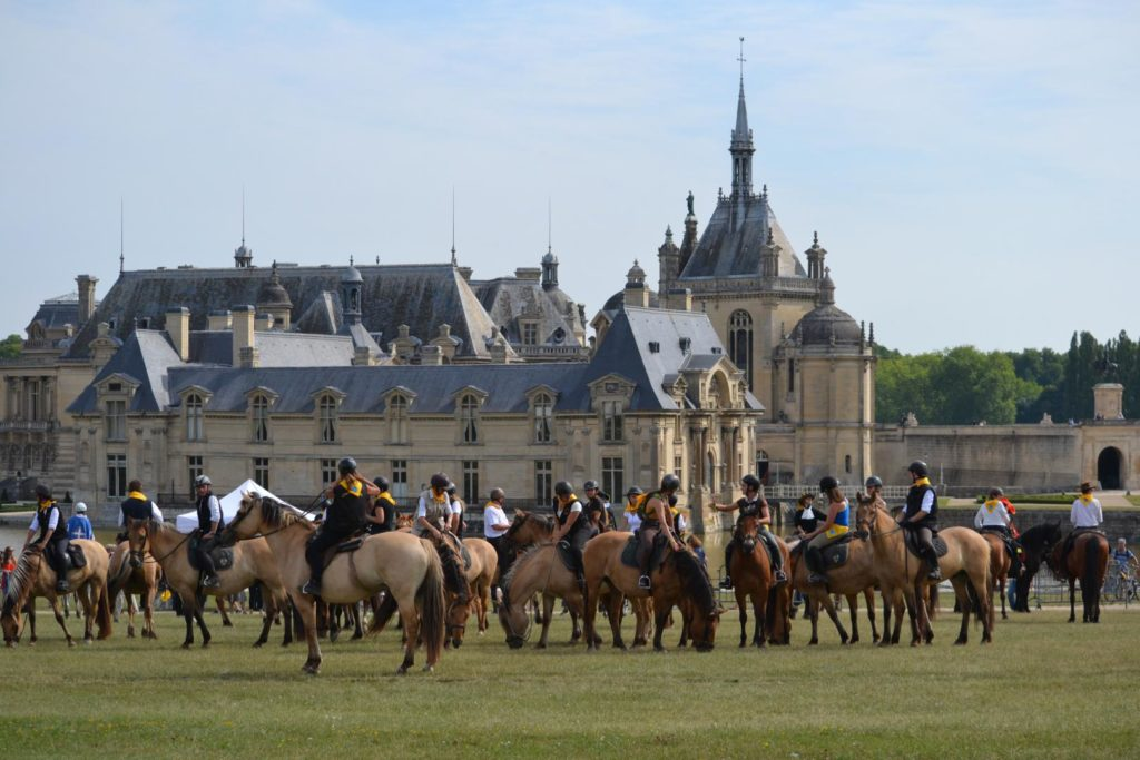 chevaux henson chantilly